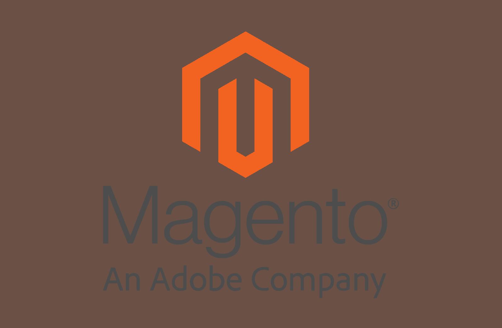בניית אתר מג'נטו